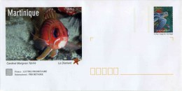 """PAP De 2007 Avec Timbre """"La Tortue Luth"""" Et Illust.""""Cardinal Marignan - Martinique"""" Avec Carte De Correspondance - Postwaardestukken"""