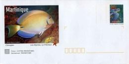 """PAP De 2007 Avec Timbre """"La Tortue Luth"""" Et Illust. """"Chirurgien - Martinique"""" Avec Carte De Correspondance - Entiers Postaux"""