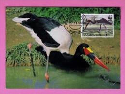 Jabiru Du Sénégal Carte Maximum Cards Maxicard Sadd Lebilled Stork ZAMBIA WWF NDOLA 1996 Oiseaux Birds Fauna Faune Mc346 - Zambia