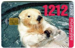 1 - Seal - Animals - Phonecard - Hungary 2001 - Sin Clasificación