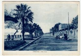 TERRACINA - VIALE CIRCE - LATINA - 1953 - Vedi Retro - Latina