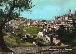Molise-campobasso-lucito Veduta Panorama Interno Anni 60 - Italia