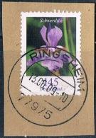 2006 Dauerserie Blmen (Schwertlilie)