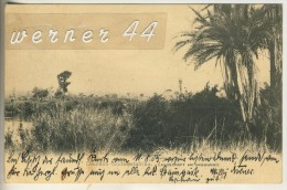 Deutsch-Süd-West-Afrika V. 1905  Landschaft Am Okawango  (45611) - Südafrika
