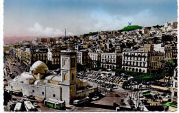 - ALGERIE - CPSM écrite ALGER - Place Du Gouvernement - Edition JOMONE 324 - - Algerien