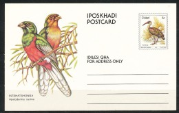 Afrika- Ciskei   - Postkarte - Ciskei