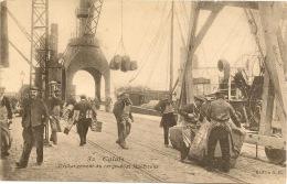 GCALAIS   DECHARGEMENT DU CARO BOAT - Calais
