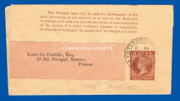 NATAL 1902 WRAPPER  HALFPENNY  PIETERMARITZBURG TO FRANCE - PLEASE SEE SCAN - Sud Africa (...-1961)