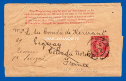 NATAL 1896 WRAPPER  ONE PENNY  G.P.O. NATAL TO FRANCE - PLEASE SEE SCAN - Sud Africa (...-1961)