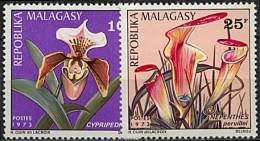 Madagascar, n� 531  n� 534** Y et T