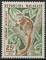 Madagascar, n� 536 � n� 537** Y et T