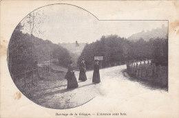 Barrage De La Gileppe - L'Avenue Sous Bois (animée) - Gileppe (Barrage)