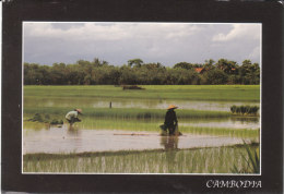 CAMBODJA - Cambodge