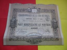 CHARBONNAGES DE LA SEO DE URGEL (espagne) 1893 - Hist. Wertpapiere - Nonvaleurs