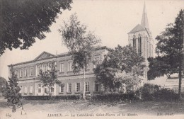 Cp , 14 , LISIEUX , La Cathédrale Saint-Pierre Et Le Musée - Lisieux