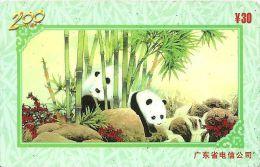 TELECARTE PHONECARD CHINE CHINA  30 YUANS PANDA - Chine