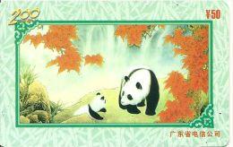 TELECARTE PHONECARD CHINE CHINA  50 YUANS PANDA - Chine