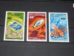 French Somali Coast - 1966 Sea Life MNH__(TH-468) - Französich-Somaliküste (1894-1967)