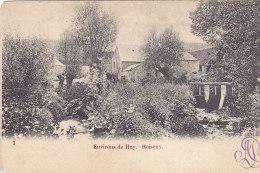 Huy (environs De) - Roiseaux (précurseur) - Huy