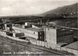 Lombardia-brescia-capriolo Veduta Stabilimento Cotonificio Niggeler E Kupfer Anni/50/60 - Altre Città