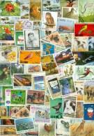 4 Kilo TEMBRES SEULEMENT THEMATIQUE Sans Papier * STAMPS THEMATIC OFF PAPER - Briefmarken