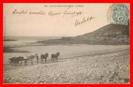 **SAINT JEAN DU DOIGT Attelage Sur La Plage (scan Recto Verso) - Saint-Jean-du-Doigt