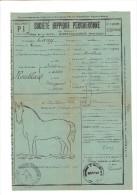 FAIRE PART DE NAISSANCE 1917 DU POULAIN ROUBLARD A LA SOCIETE HIPPIQUE PERCHERONNE A NOGENT LE ROTROU SIGNEE DU MAIRE - Birth & Baptism
