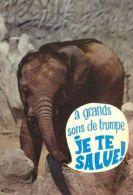 ELEPHANTS  Postcard Used   ( Z 444 ) - Elephants