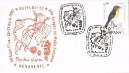 12663. Tarjeta Exposicion BENAVENTE (Zamora) 1987. Exfibe 87. Medio Ambiente - 1931-Hoy: 2ª República - ... Juan Carlos I