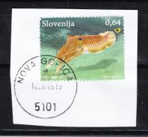 Slovenia   -   2013.  Calamaro. Squid - Vita Acquatica