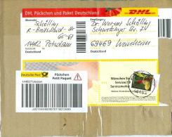 BRD Potsdam TGST 2010 DHL Päckchen-Aufkleber Mi. 2768 Frauenschuh Orchidee - [7] Federal Republic