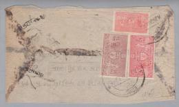 Nepal 1960 Ca. Brief Mit Dienstmarken - Népal
