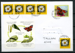 ESTONIA Estland Eesti Postal Cover Cancelled 2015 Stamp The European Peacock Butterfly 2014 - Estonia