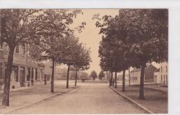 Zaventem - Avenue De Vilvoorde Et Cité - Jardin - Zaventem
