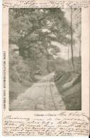 GENK - Campine Limbourgeoise (3600) : Chemin á Genck. CPA Précurseurs. - Genk