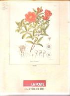 Belgique- Calendrier Postal 1993 - Service Social De La Régie Des Postes - Calendriers