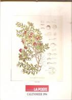 Belgique- Calendrier Postal 1994 - Service Social De La Régie Des Postes - Calendriers