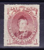 Kanada Neufundland 1877 SG.#40 (*) Signiert - Neufundland