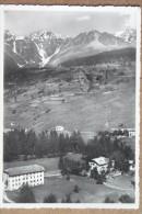 ACIDULE DI  PEJO -1952 - Italien
