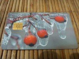 PhonecardBelgium  Seazon Used