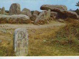 Dolmen Dolmens..Menhirs..Mégalithes Pierres Rochers Carnac Dolmen De Kermario - Dolmen & Menhirs