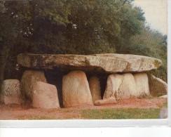 Dolmen Dolmens..Menhirs..Mégalithes Pierres Rochers Le Bernard Vendée Dolmen De La Frebouchère - Dolmen & Menhirs