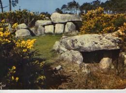 Dolmen Dolmens..Menhirs..Mégalithes Pierres Rochers Carnac Mané-Kerioned - Dolmen & Menhirs