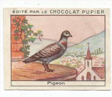 CHROMOS CHOCOLAT PUPIER - LES ANIMAUX DOMESTIQUES - LE PIGEON. - Sin Clasificación