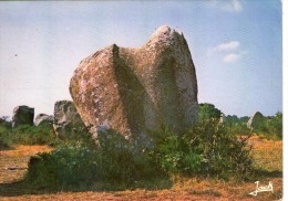 Dolmen Dolmens..Menhirs..Mégalithes Pierres Rochers Carnac Alignements Du Ménec Cheval De St-Cornély - Dolmen & Menhirs
