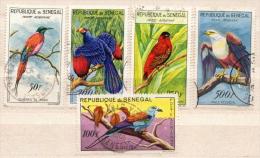 Senegal Used Set - Vogels