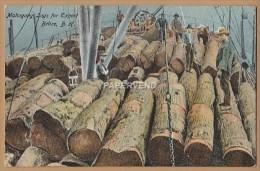 British Honduras  Belize Mahogany Logs For Export  Bh17 - Belize
