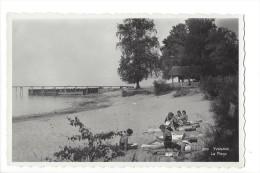 12606 - Yvonand La Plage Et Ses Baigneuses - VD Vaud