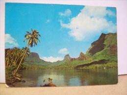 """Baia Di Paopao """"Moorea"""" (Polinesia Francese) - Polinesia Francese"""