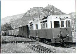 CP Train - 06 Alpes Maritimes - Train Marchandises à Touet Sur Var - Cp N° 0610.7 - Sonstige Gemeinden